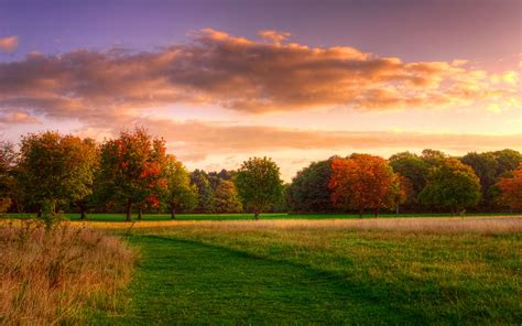 wallpaper natural landscape autumn sunrise forest sky
