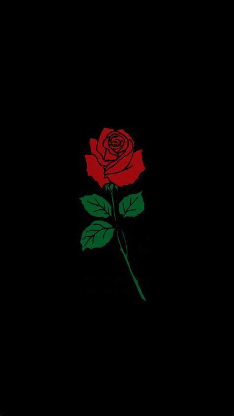 black flower rose wallaper background wallpaper