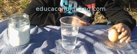 experimento agua con sal experimento del huevo que flota en agua con sal