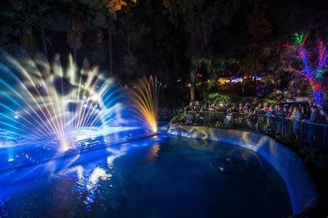 L A Zoo Lights Show Festivities Canyon News Light Show In Los Angeles