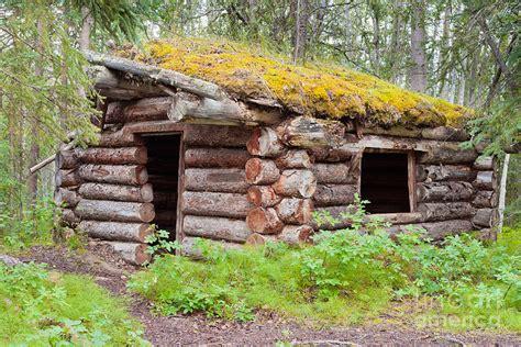 Traditional Log Cabin by Traditional Log Cabin Rotting In Yukon Taiga By