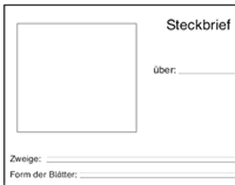 Kindergarten Arbeitsblätter pdf kostenloser Download