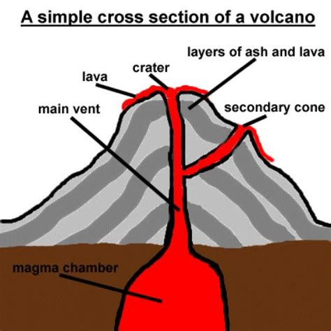 cross section define science chapter7 unit 1 geology basic sciences 711 with