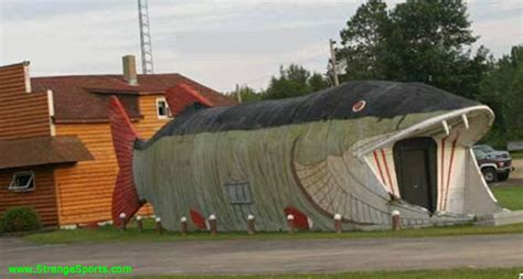 crazy houses crazylinkz crazy house gallery