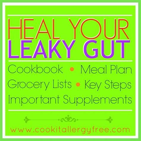 8 supplements to heal a leaky gut a simple and easy to follow guide to heal the gut