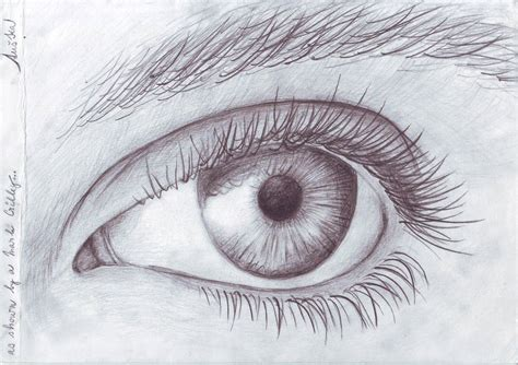 A Drawing Of An Eye by Drawing Of An Eye New Calendar Template Site