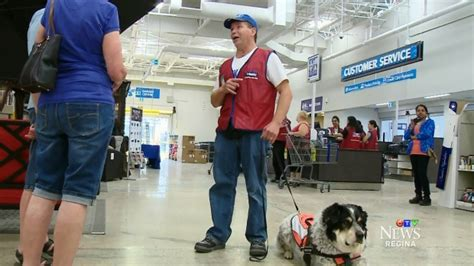are dogs allowed in lowes lowes hires a and his service 3milliondogs