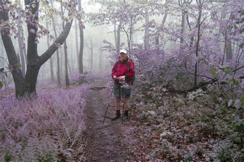 How To Hike The Appalachian Trail In Sections by Neosho Completes Section Hiking Of Appalachian Trail