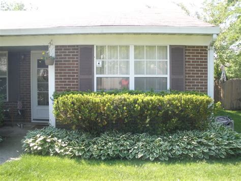 bushes for front of house my old quot front quot of my house