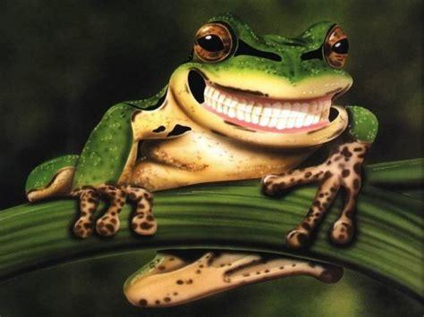 una rana a frog la ciencia con la boca abierta una rana tiene dientes cubadebate