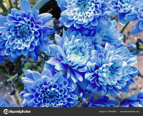 mazzo di fiori immagini mazzo di fiori foto stock 169 richiab 132342882