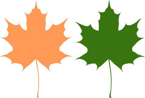 file maple leaf svg maple leaves free vector 4vector