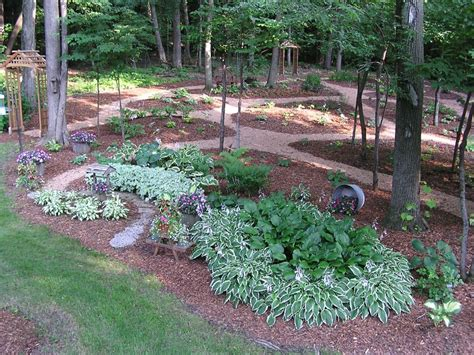 Hosta Garden Designs by Hosta Garden Design Software For Room Design