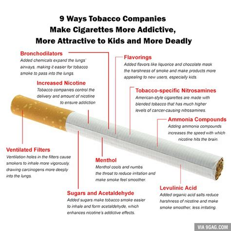 Best Way To Detox From And Cigarettes by 9 Ways Tobacco Companies Make Cigarettes More Addictive