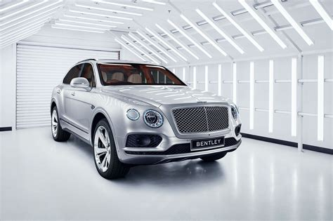 suv bentley white 100 suv bentley white 2016 bentley suv confirmed
