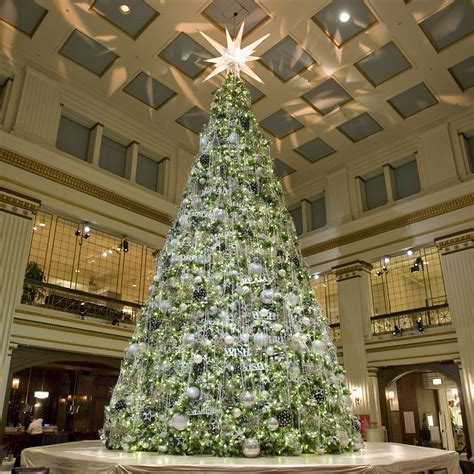 giant everest fir christmas tree  led lights
