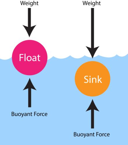 Why Things Sink by Buoyancy Ck 12 Foundation