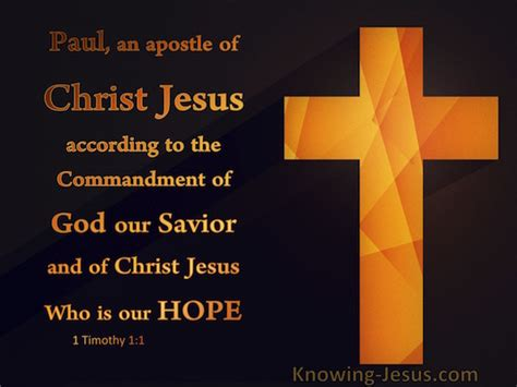 jesus the lord according to paul the apostle a concise introduction books 1 timothy 1 1 verse of the day