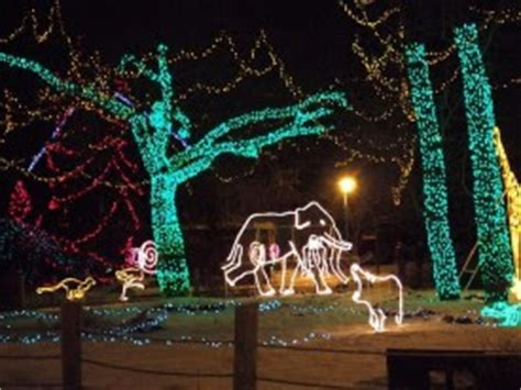Chateau De Victoria Have A Holly Jolly Christmas Zoo Lights Baltimore