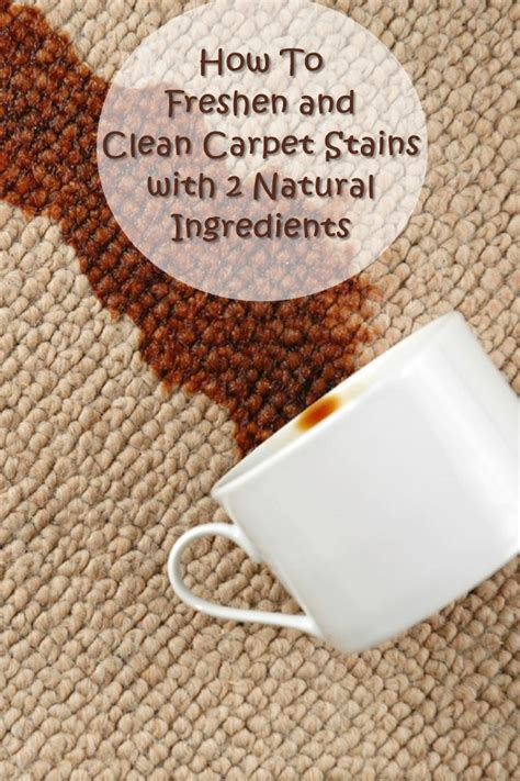 how to clean rug stains how to freshen and clean carpet stains with 2 ingredients shtf prepping homesteading