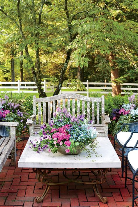 container gardens spectacular container gardening ideas southern living