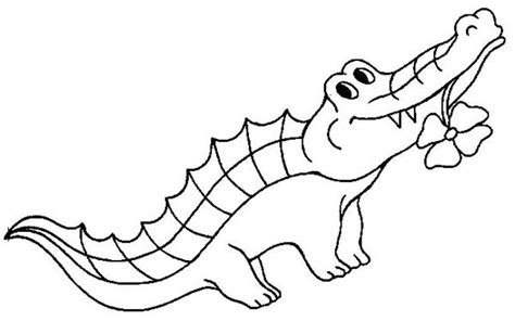 alligator pictures for kids cliparts co
