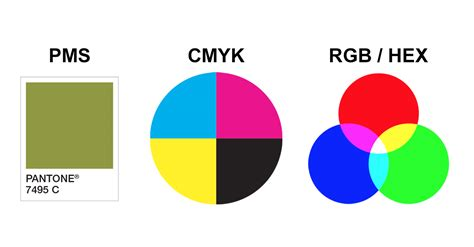 color systems color systems guide the difference between pms cmyk