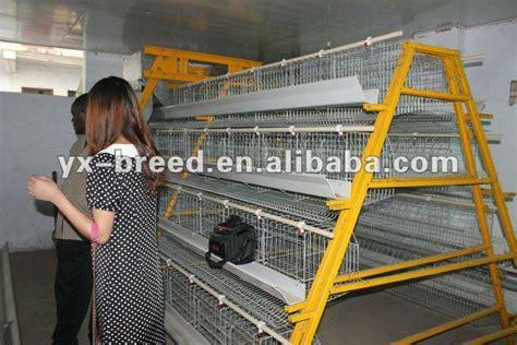 chicken hatchery layout yam coop broiler chicken house designs most popular