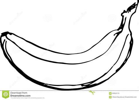 banana vector illustration stock vector image 65054113