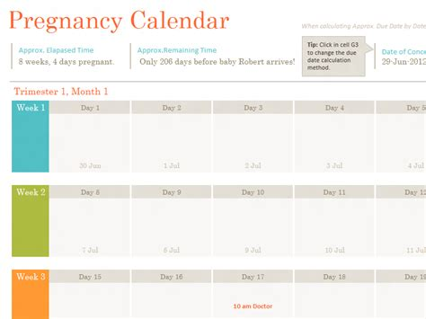 Pregnancy Calendar Baby Shower Planner Office Templates
