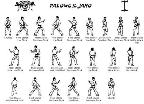 palgwe1 gif 914 215 663 martial arts