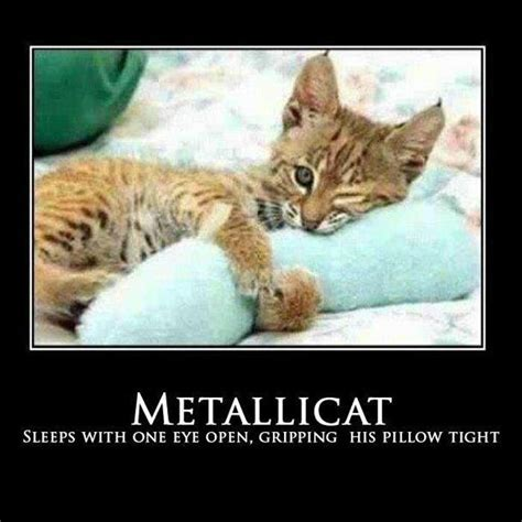 Sleep With One Eye Open Gripping Your Pillow Tight by An Enter Sandman Metallica Fan Cat