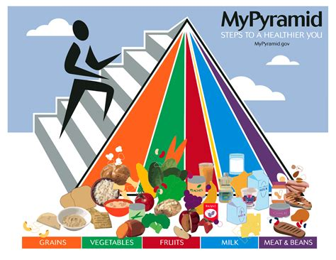 food pyramid the conspiracy of the food pyramid new trends in nutrition