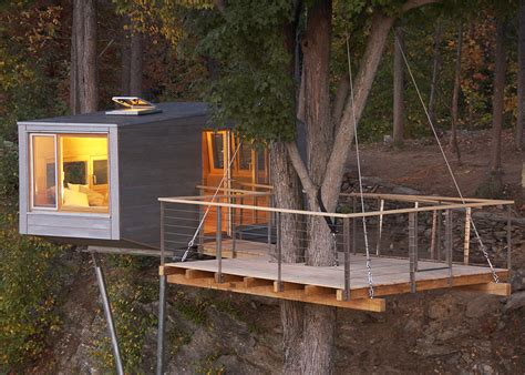 maple tree near house the cliff house is an eco treehouse wrapped around a maple tree 6sqft