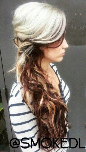 two tone hair color on top light on bottom 25 best ideas about two toned hair on plaits