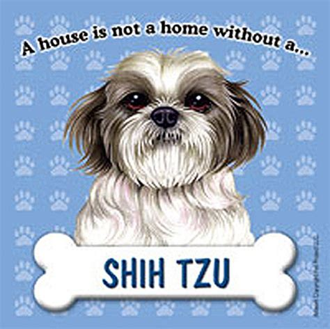 shih tzu dog house shih tzu dog magnet sign house is not a home pup