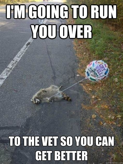 Get Better Meme - get well soon road kill balloon memes