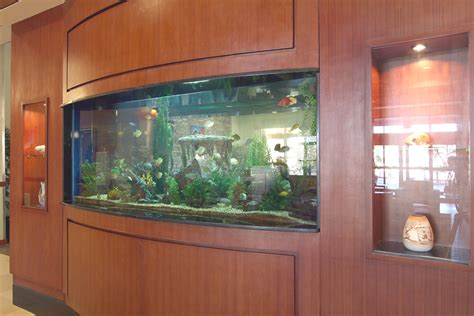 aquarium schrank ikea decorations big fish tanks for sale with exciting and