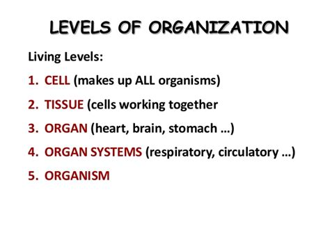 carbohydrates levels of organization b sc biochemistry ii cellular biochemistry unit 1 basics