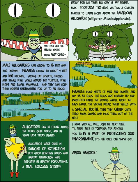 alligators in texas map tpwd tortuga tex and the american alligator