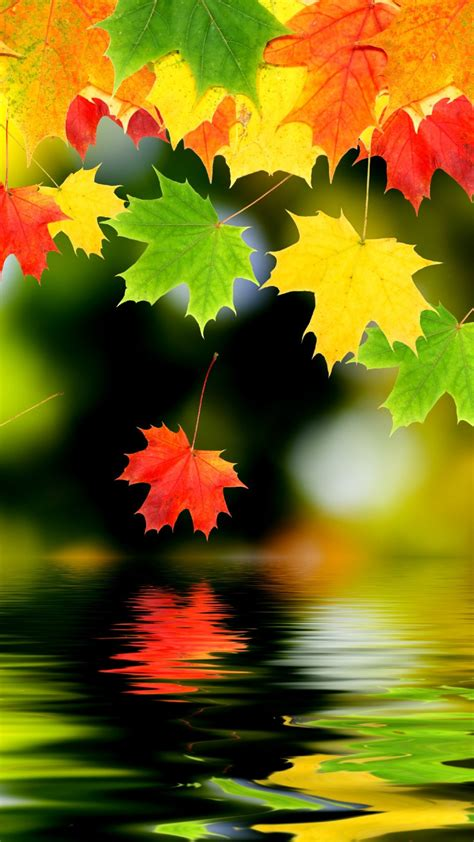 wallpaper for iphone 6 thanksgiving samsung iphone 6 plus wallpaper items share samsung