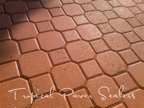 And Pavers Photo Gallery Paver And Brick Sealing Tropical Paver