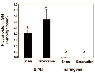 8 prenylnaringenin supplement 8 prenylnaringenin a anabolic for