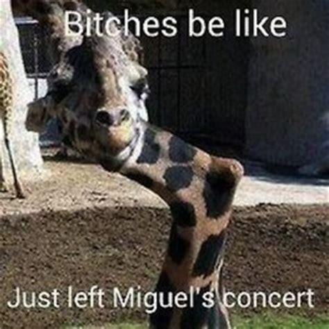 Miguel Concert Meme - miguel meme straightfromthea 12