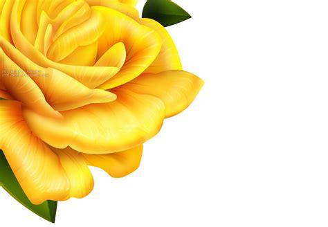 border design flower yellow yellow flower border design high resolution widescreen