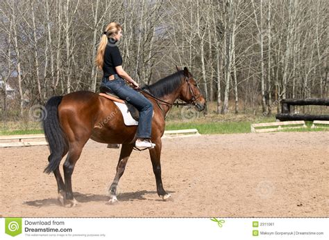 commercial girl riding horse girl riding on horse stock image image of exercise