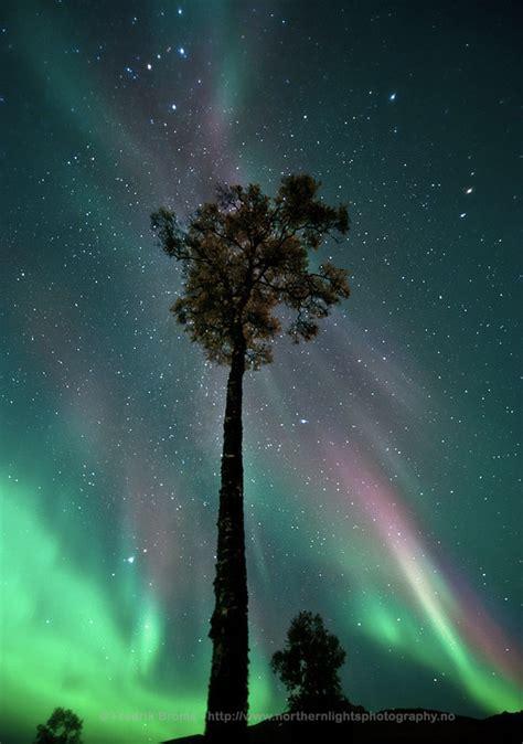 northern lights tromso september september