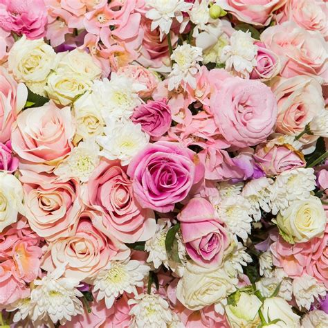 mooie bloemen afbeeldingen mooie bloemen achtergrond stockfoto 169 subinpumsom 64906463