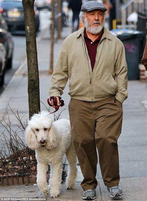 standard poodles with beards dustin hoffman wears bushy beard as he takes poodle for a
