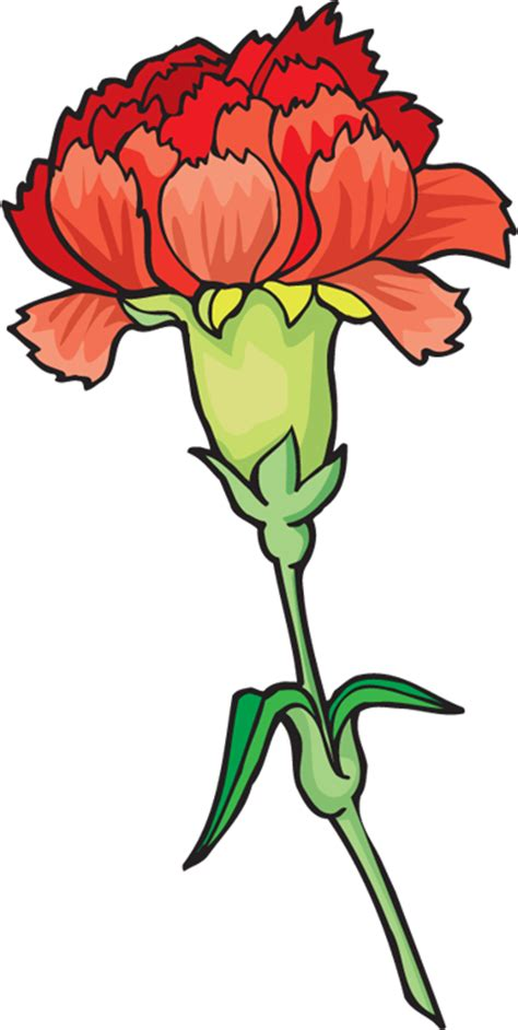 Carnation Clipart carnation clip clipart best clipart best